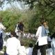 campana-v-de-o-2008-11