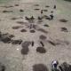 excavaciones-para-monumento-3